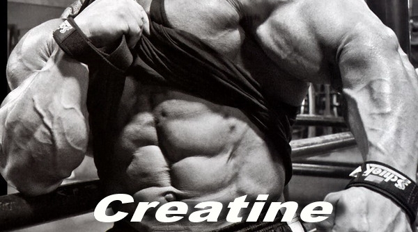 Creatine Isn T Just For Building Muscle
